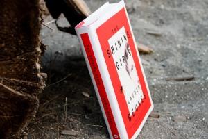 July Beach Books (9)