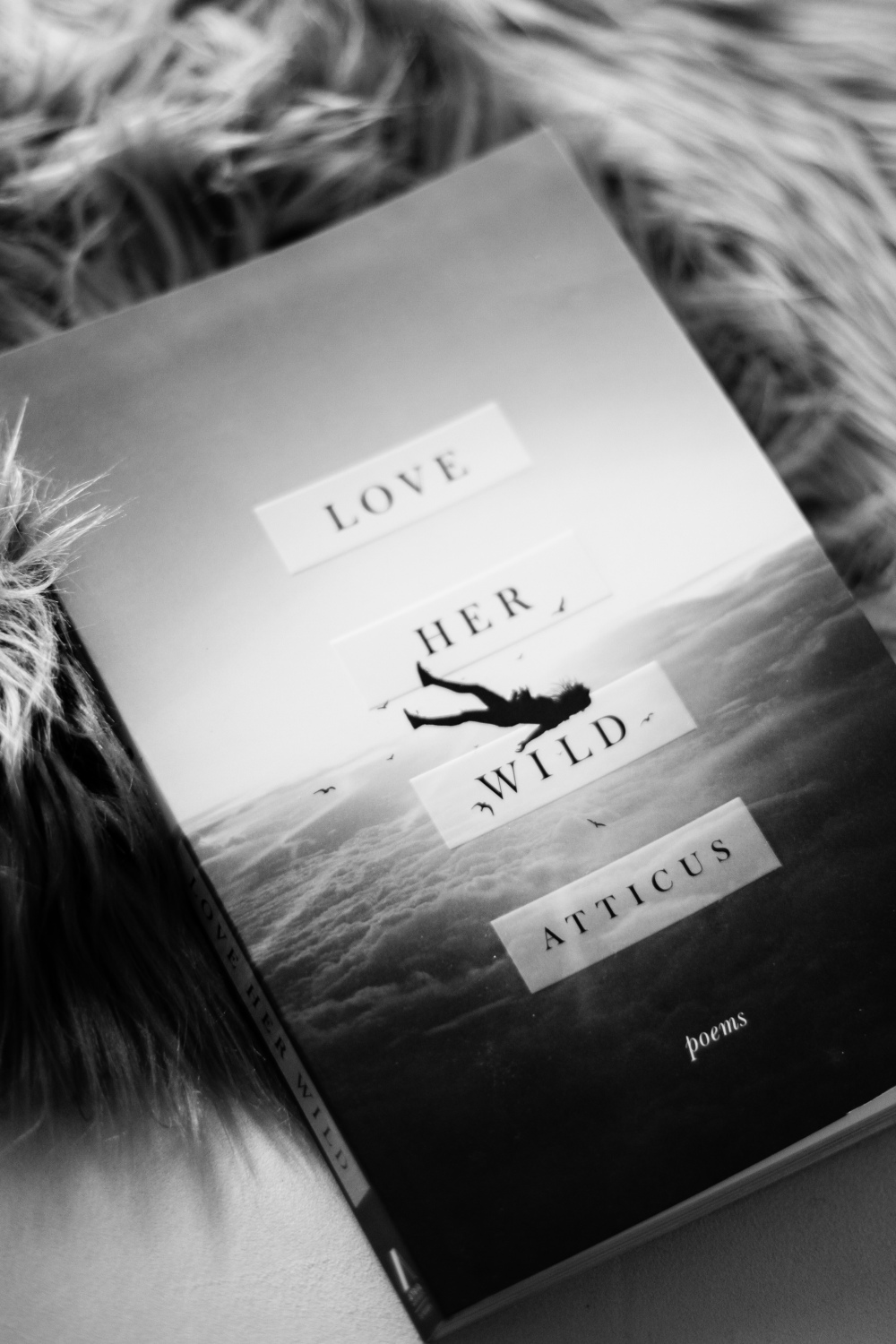 Love Her Wild by Atticus Poetry  Goodreads