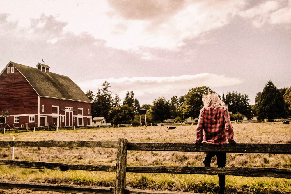 FARMBLOG (99)