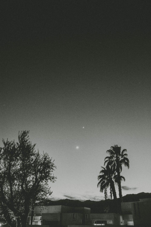 palmspringsblog (91)