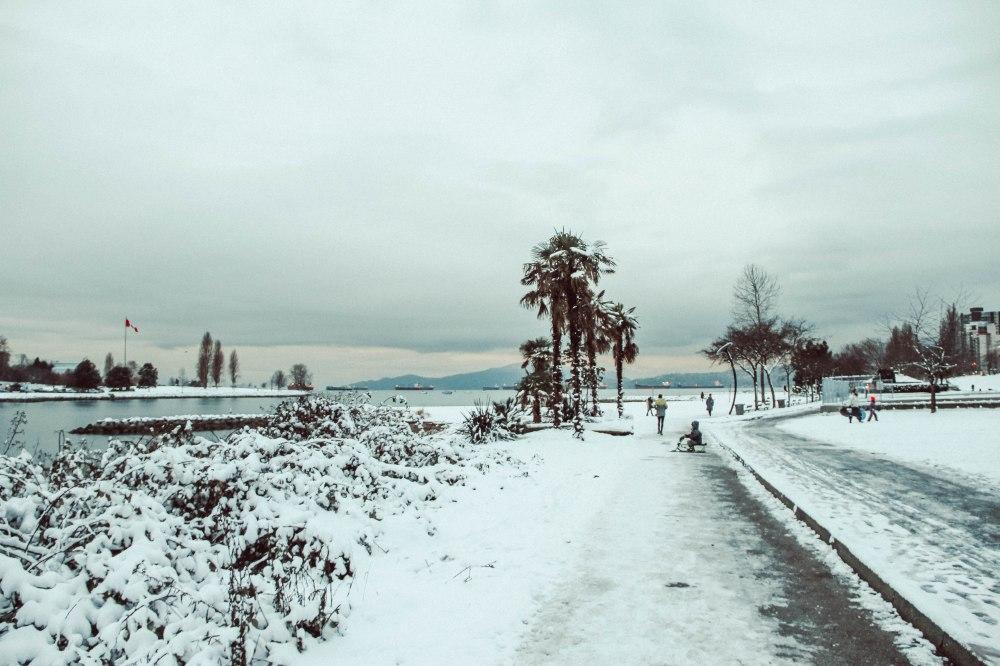 snowblog (10)