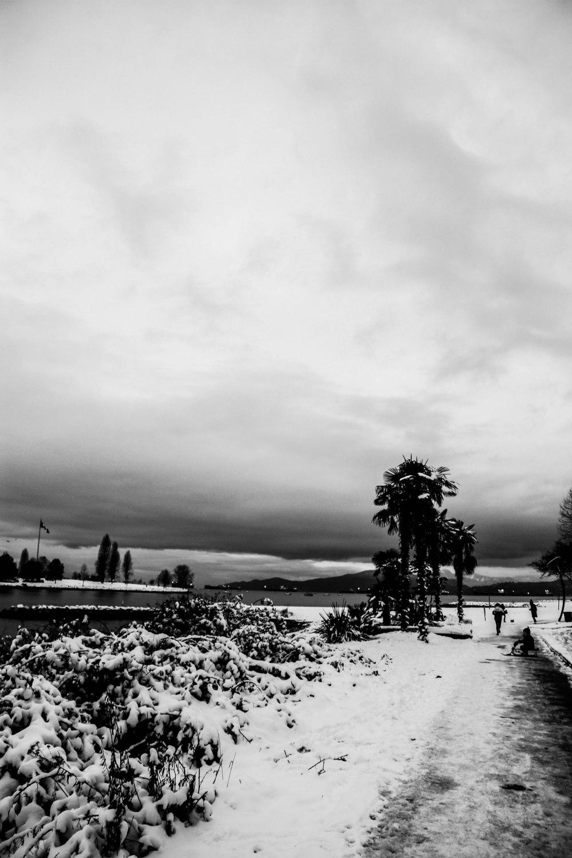 snowblog (11)