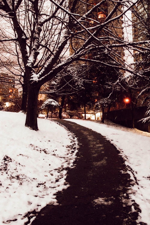 snowblog (38)