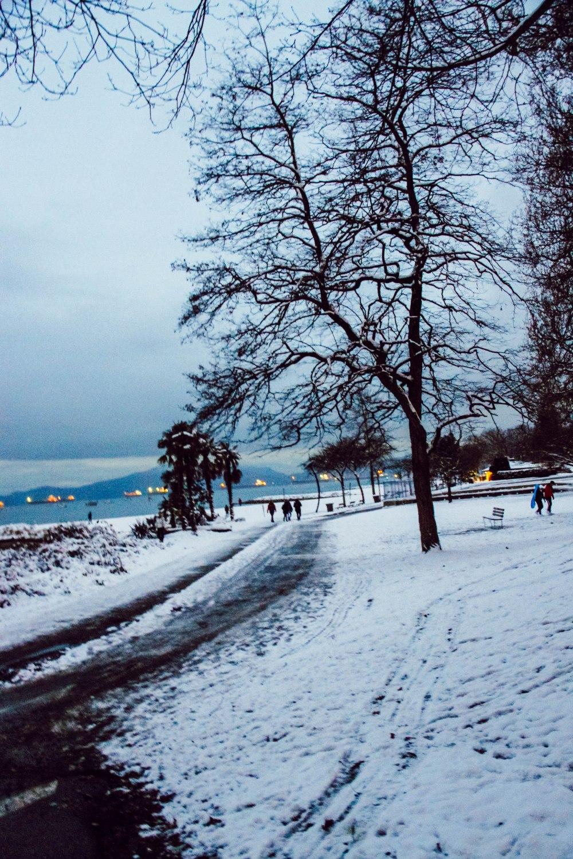 snowblog (6)